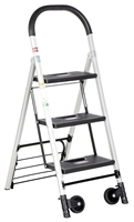Aluminum Ladder/Carts