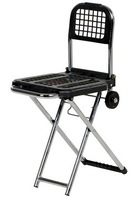 Multi-Function Luggage Cart/Chair